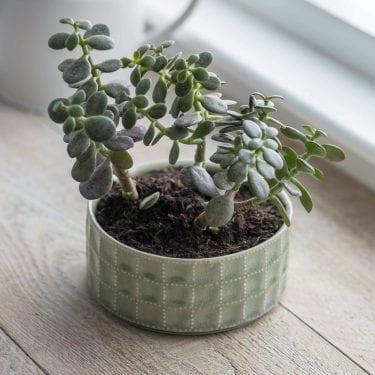 Ceramic Sorrento Bowl