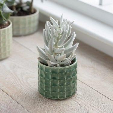 Ceramic Sorrento Pot